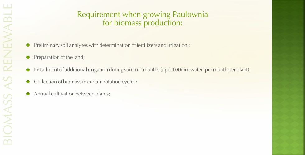 Paulownia – green energy future-page15