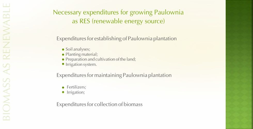 Paulownia – green energy future-page16