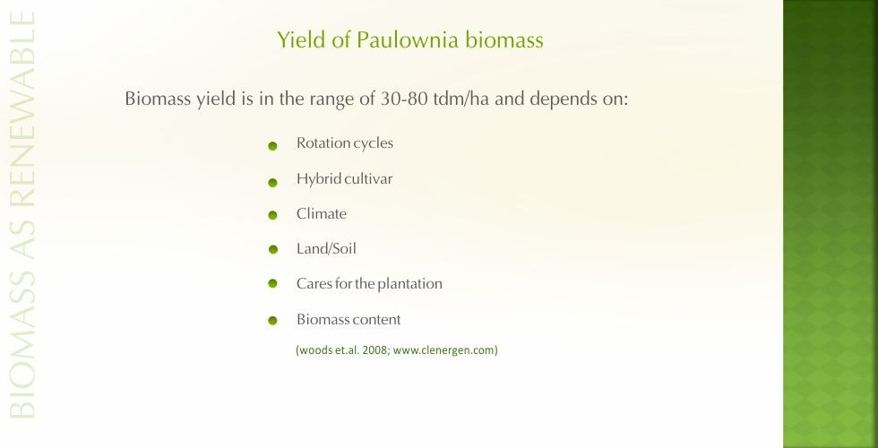 Paulownia – green energy future-page9