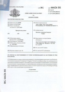 patent opis