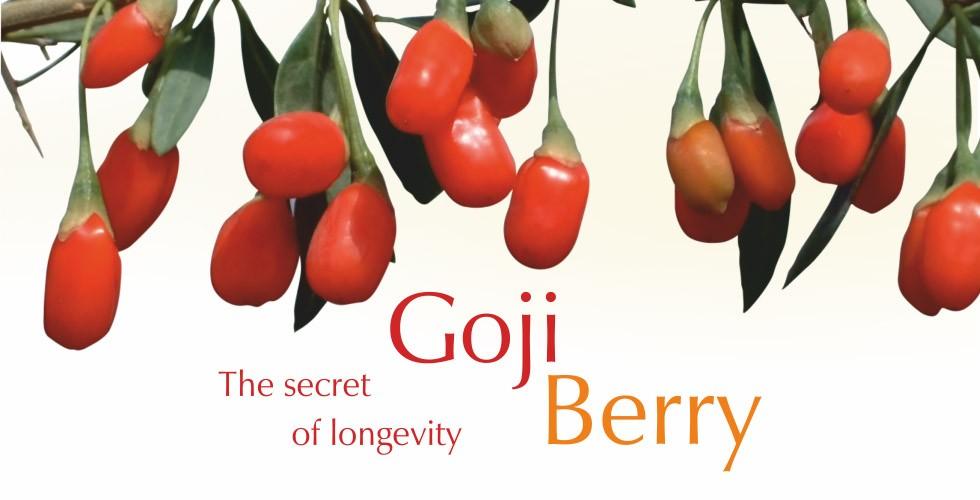 Goji berry – health and longliving