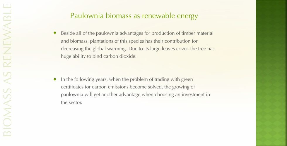 Paulownia – green energy future-page18