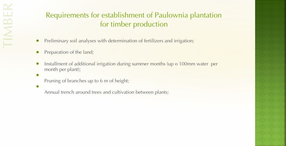 Paulownia – green energy future-page23