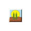"Institute of soils ""N. Pushkarov"""